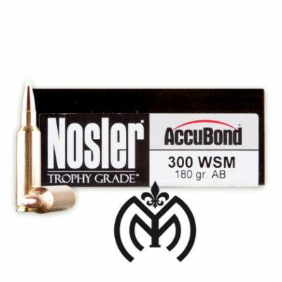 NOSLER 300 WM 180gr AB-01
